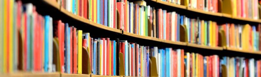Google Index ist wie eine Bücherei