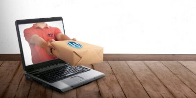 Starte mit deiner WordPress Webseite professionell und spar die Zeit, Nerven, Ärger und Geld
